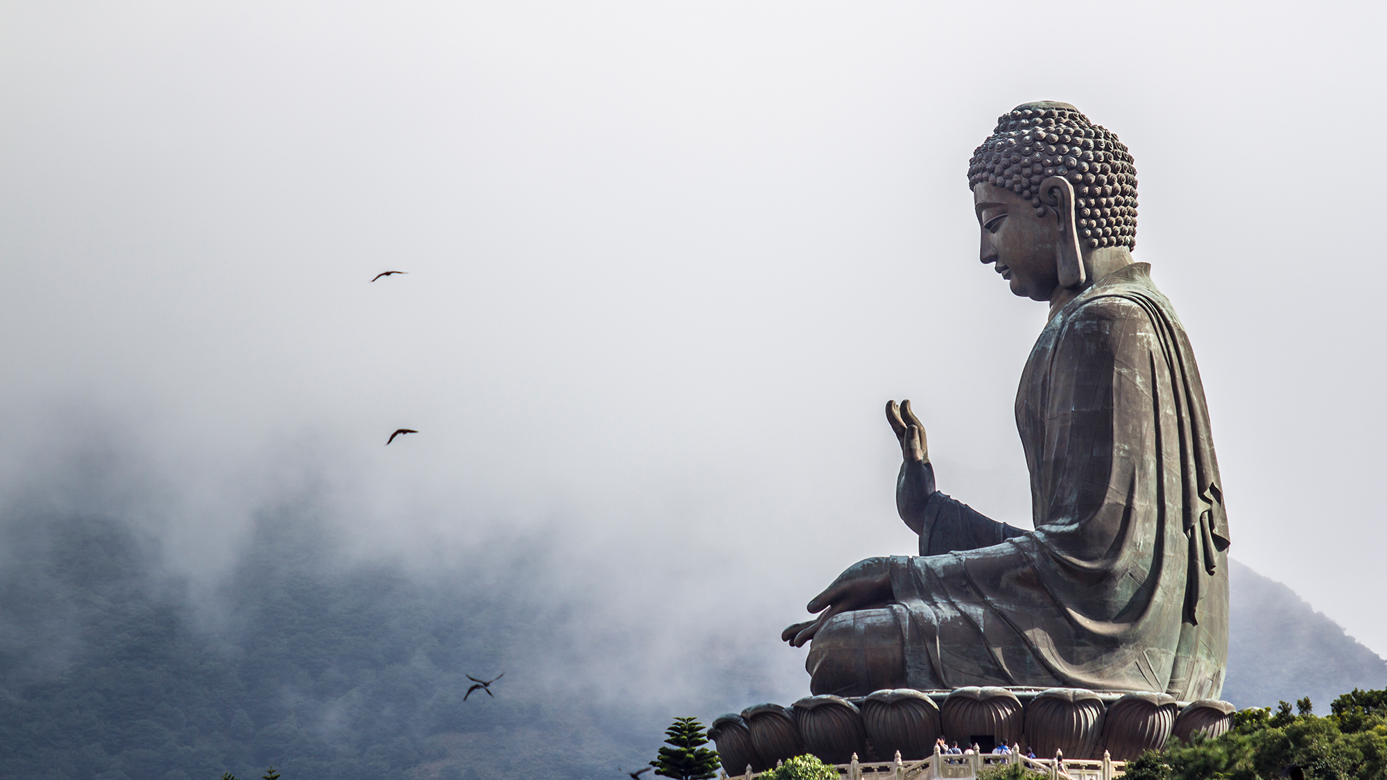 Ancient Buddhist Wisdom for Turbulent Times